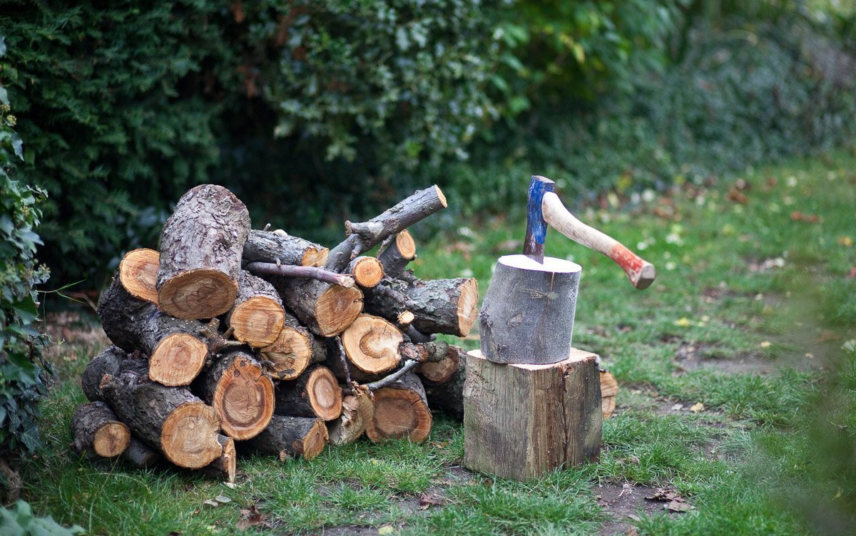 Reminders of Autumn, a pile of cut logs and an axe in a garden.
