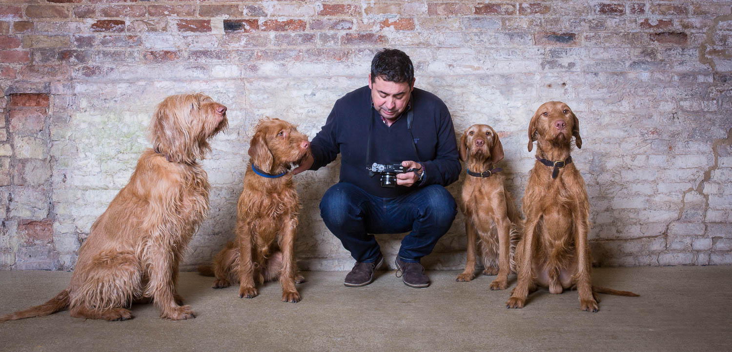 Wedding photographer cambridge with four dogs